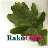 RakuCMS